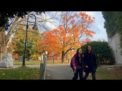 Students Use GIS Technology to Describe Campus Trees