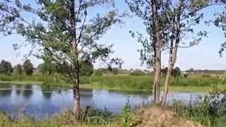 Рыбалка на реке цна тамбовской области
