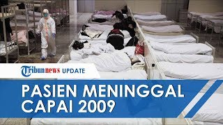UPDATE Terbaru Kasus Wabah Virus Corona: Pasien Meninggal Capai 2009, 75.000 Lainnya Terinfeksi