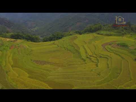 Puluong Natura is very nice & natural bungalow