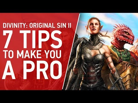 7 Tips To Make You A Pro at Divinity: Original Sin 2