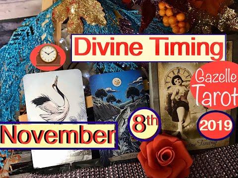 November 8 2019 Daily Tarot Reading 🕰 Divine Timing 🕰  #tarot #daily #november