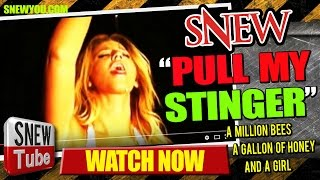 SNEW - PULL MY STINGER