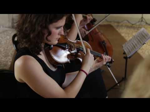 Musica cerimonia Verona Selezione musicisti classici Verona musiqua.it