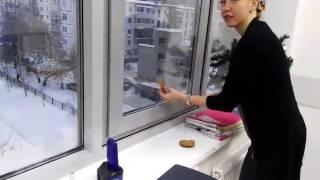 Смотреть онлайн Ворона крадет ложку у офисных работников
