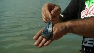 Ловля сома на искусственную лягушку