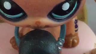 LPS пародия клип :Я каралева ночи.Бульдожка ТВ