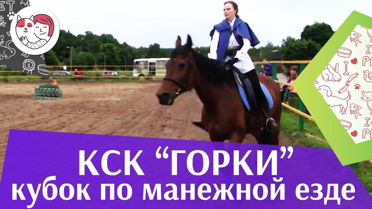 Летний кубок КСК Горки по манежной езде КЮР часть 2 на ilikepet