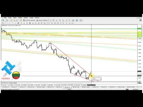 Salex mercato forex