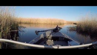 Рыбалка лиманы приморско ахтарск
