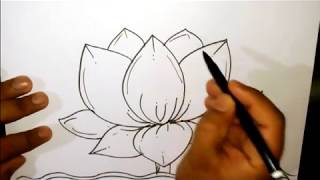 How To Draw A Lotus - Lotus Scenery Drawing In Easy Steps Drawings