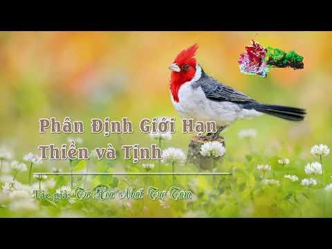 Chương 05: Phân Định Giới Hạn Thiền và Tịnh