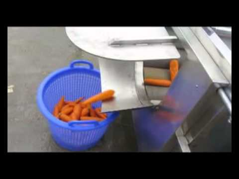 Lavadora y peladora Maxia MX LP220 con zanahoria
