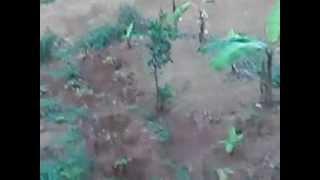 preview picture of video 'twosoek712 vs magnet'