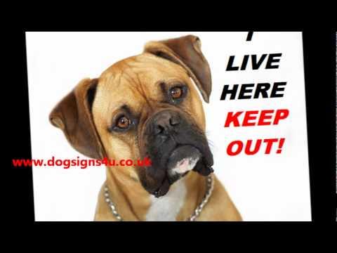 Personalised Beware of dog signs,dog warning signs Rottweiler, German Shepherd sign