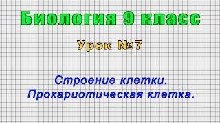 Биология 9 класс Урок 7