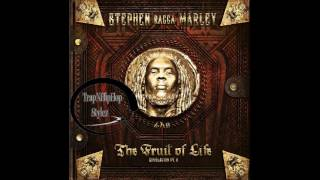 Stephen Marley – Tonight (It's a Party) [feat. DJ Khaled, Waka Flocka Flame & Iggy Azalea]