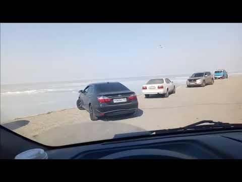 Зарабатываем на рыбалке альбион онлайн