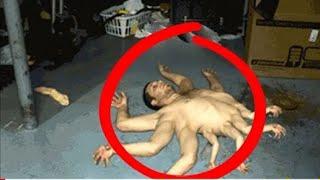 Mutanty z Czarnobyla.Potwory USZKODZONE DNA
