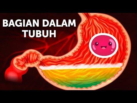 Cancer peritoneal supervivencia