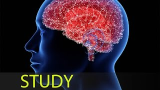 3 Hour Super Learning Music: Study Music, Relaxing Music, Meditation Music, Relaxation Music ☯1646
