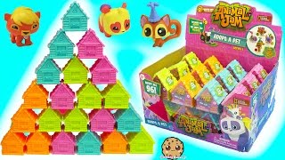Full Box 24 Animal Jam Surprise Blind Bag Houses with Mystery Game Codes - Toy Video