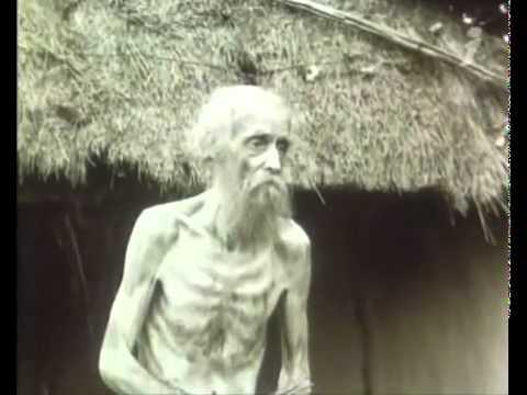 Смотреть Голод-33