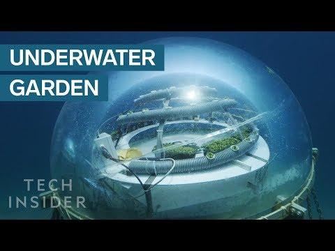 Unbelievable Underwater Farm in Italy