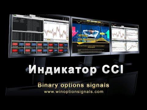 Трейдеры бинарные опционы саранск
