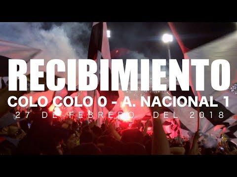 """""""Gran Recibimiento de la GB, Colo Colo 0 - Atletico Nacional 1, Copa Libertadores 2018"""" Barra: Garra Blanca • Club: Colo-Colo"""