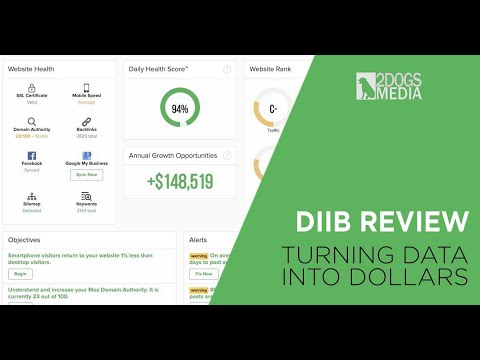Diib Review & Introduction