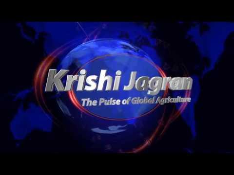 Agri News Bulletin | 6:00 PM | Krishi Jagran | 20th August 2018