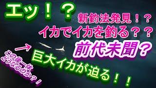 【ミラクル発生!】30時間耐久イカメタル釣行の続編!