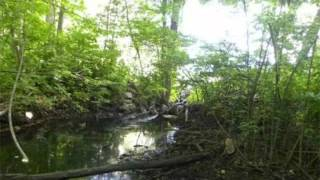 79-D-2 Dresser Hill Rd Charlton, MA 01507 - Land - Real Estate - For Sale -