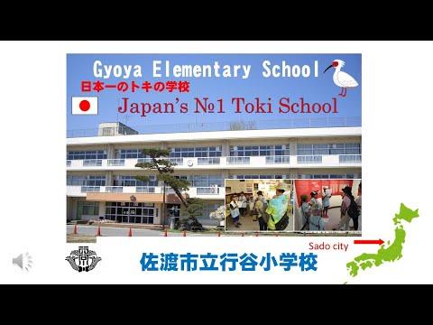 トキ解説2021 〜「日本一のトキの学校」行谷小学校〜
