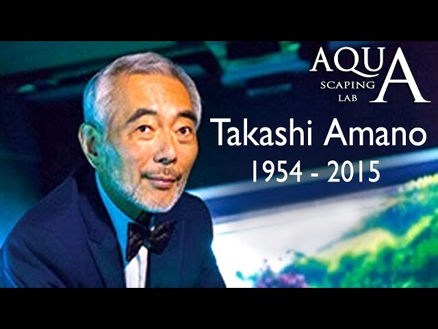 TAKASHI AMANO DEATH TRIBUTE MEMORIAL 賛辞記念天野尚 1954-2015 / video by Aquascaping Lab