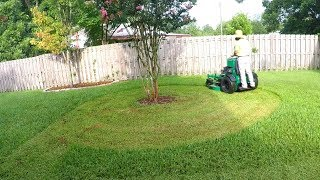How NOT To Cut Grass | Scalping The Lawn | Saint Augustine Grass