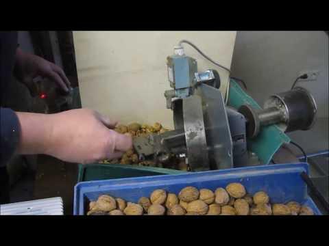 Walnussknacker Eigenbau / DIY Walnut cracker