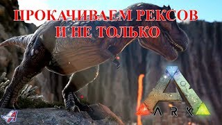 ARK: Survival Evolved: ПРОКАЧИВАЕМ РЕКСОВ И НЕ ТОЛЬКО
