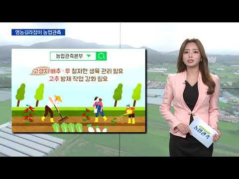 [영농길라잡이 농업관측] 엽근채소, 양념채소 9월 관측 이미지