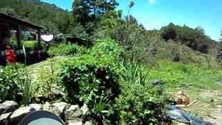 preview picture of video 'EN LA SIERRA DE DURANGO 2'