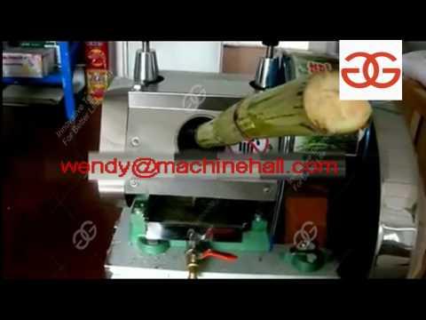 sugarcane juice extractor machine price manufacture