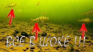 Мормышки какая для какой рыбы