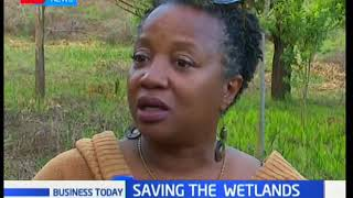 Business Today: Saving the Wetlands