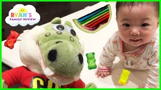 Kids playtime with twin babies and GUS the gummy gator eating Rainbow Gummy Jello!