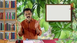 Standard 9 | Malayalam | Class – 04