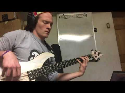 Funky bass groove. If you want to learn to play bass like this, let's get started with lessons!