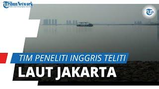 Teluk Jakarta Tercemar Paracetamol, Tim Peneliti dari Inggris Beberkan Hasilnya