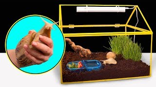 How To Make A House For A Giant Snail