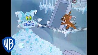 Tom y Jerry en Español | ¿Jerry cuida a Tom? | WB Kids